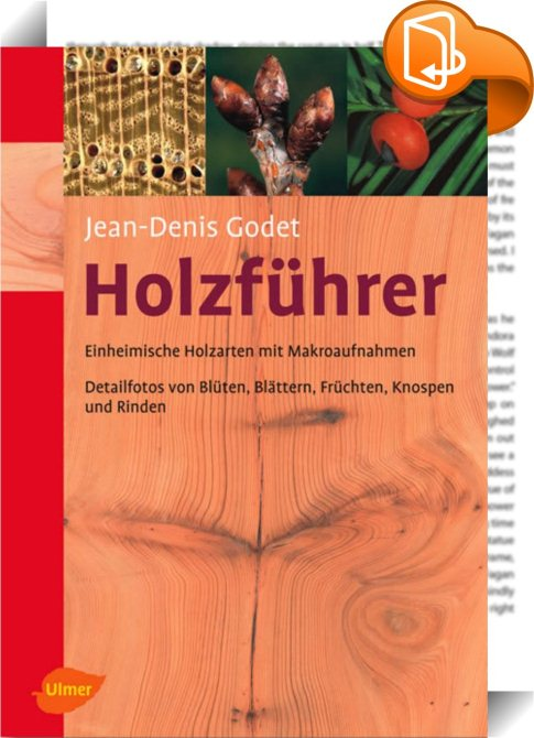 Book Cover Graphism Url ~ Holzführer jean denis godet book look